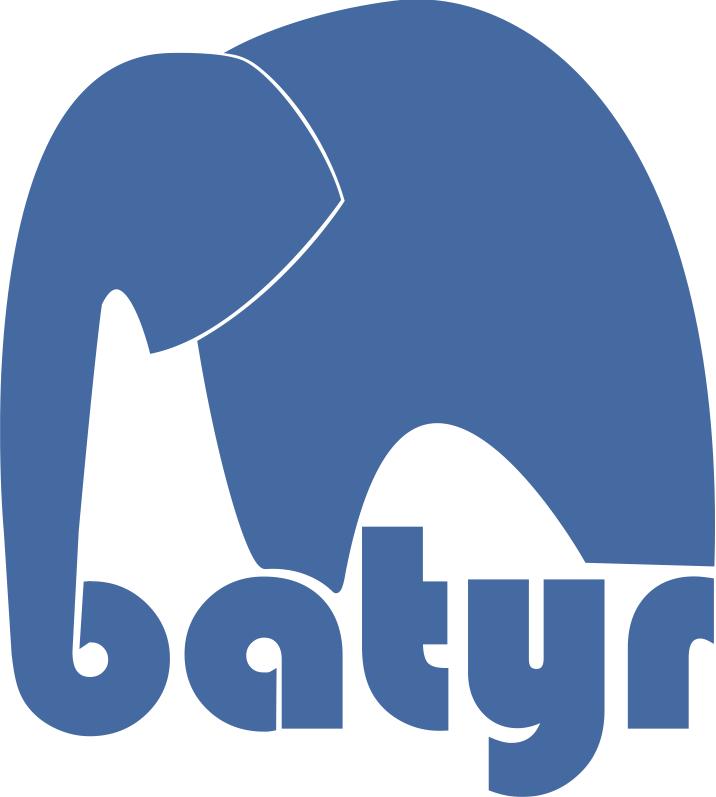 batyr@school  logo